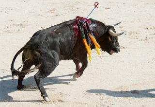 Fine della corrida nelle Baleari !