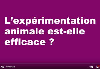 L'expérimentation animale est-elle efficace?